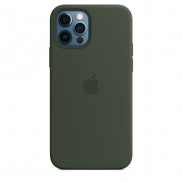 Чехол Silicone Case iPhone 12 Pro Max Зелёный